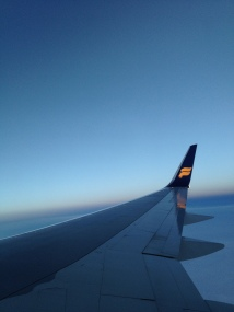 the obligatory wing photo